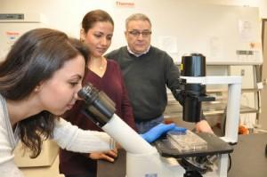 SFU Graduate Students and Professor Tibbits Create Heart Cells